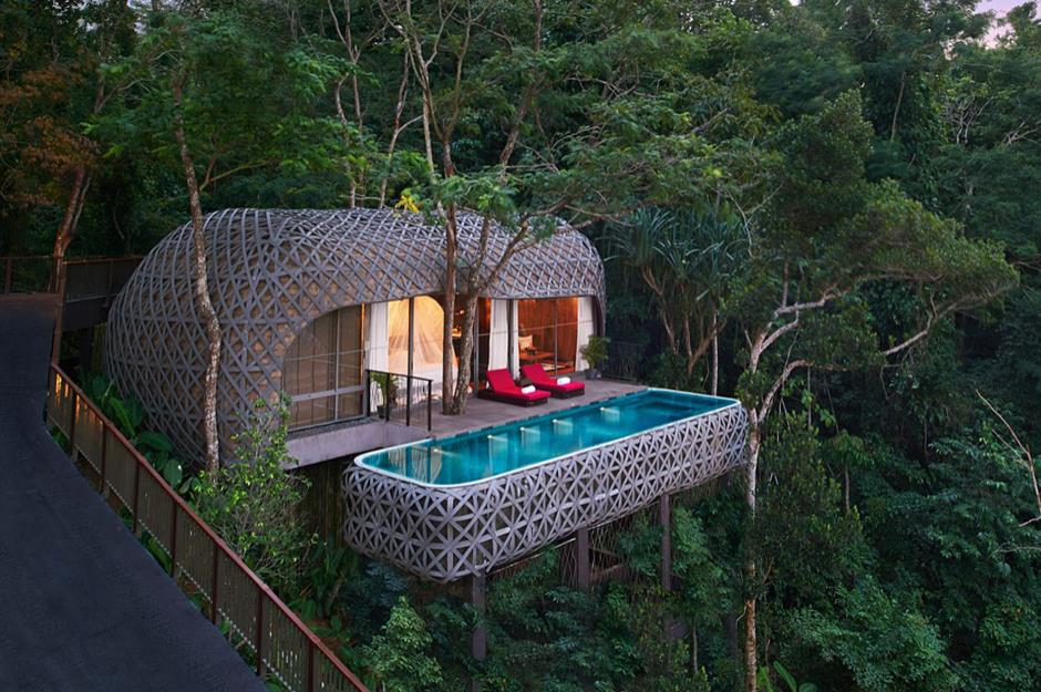 Amazing treehouses youll want to call home lovepropertycom