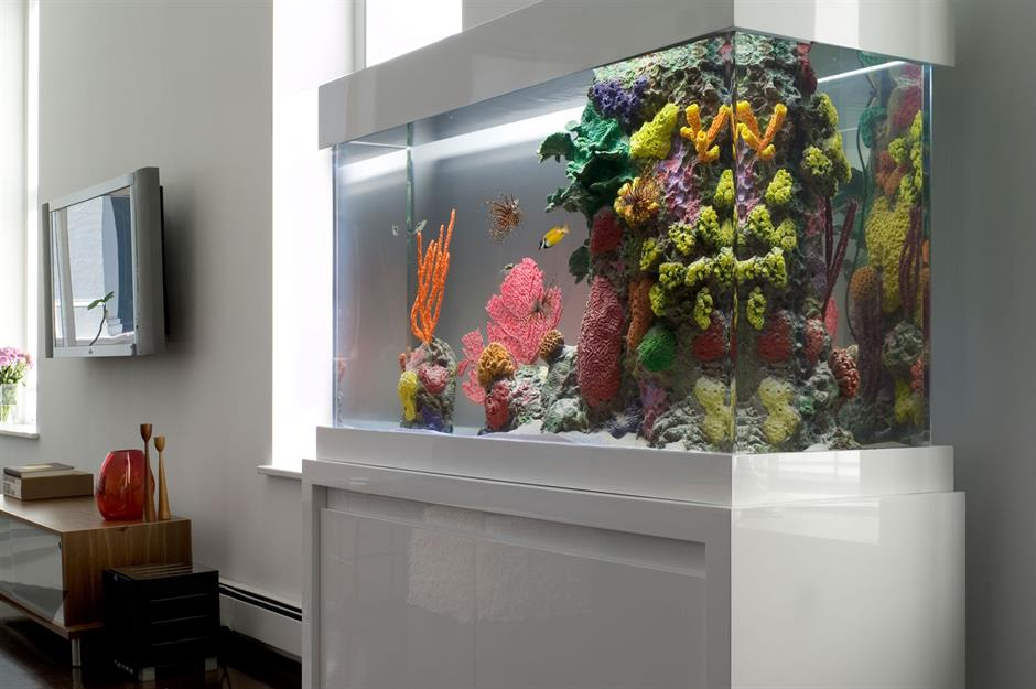 Amazing Aquariums Only Millionaires Can Afford Loveproperty Com
