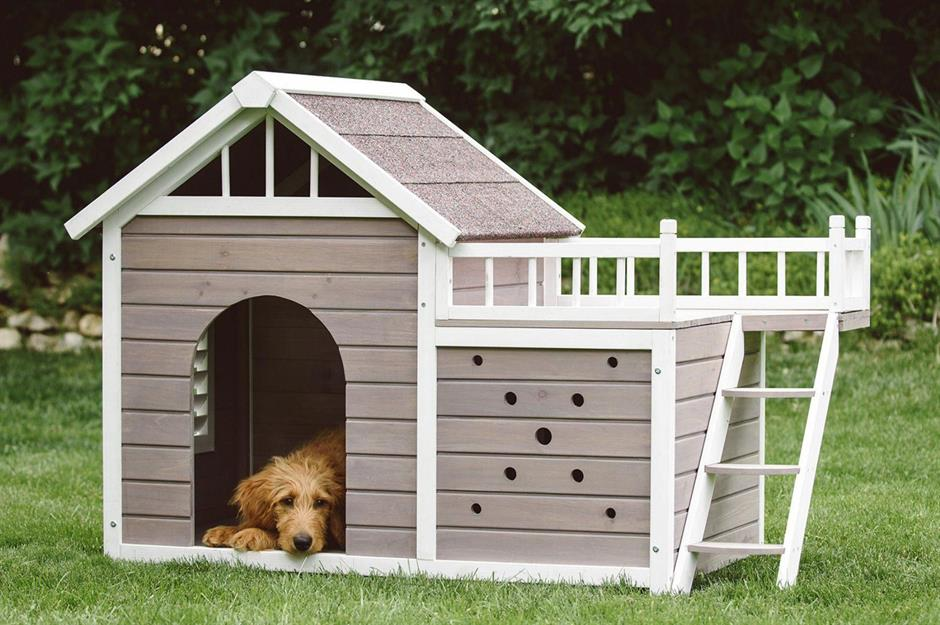 Luxury Dog Houses Pet Palaces For Your