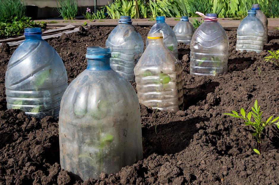 Easy gardening hacks to take the graft out of growing