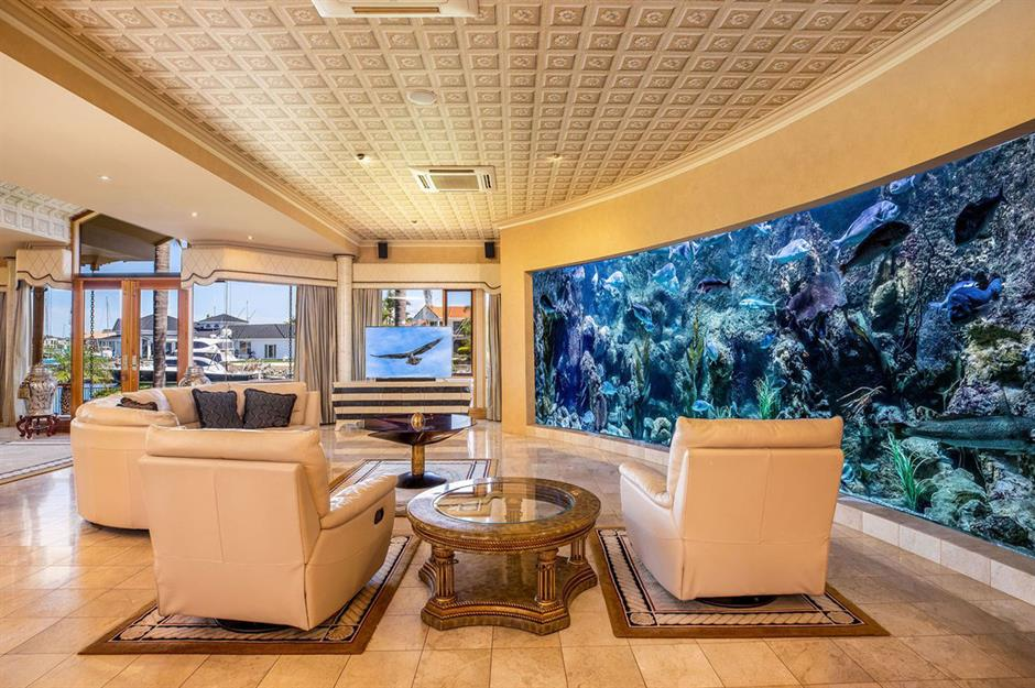 Amazing aquariums only millionaires can afford   loveproperty.com